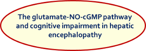 The glutamate-NO-cGMP pathway and cognitive impairment in hepatic encephalopathy